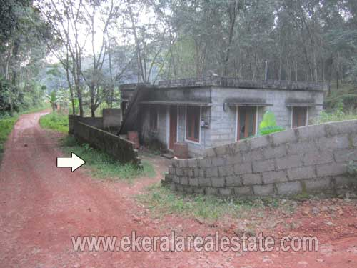 Aryanad trivandrum rubber estate for sale Aryanad rubber plot sale