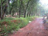 20-Cents-Land-for-Sale-near-Kattakada-Trivandrum-Kerala-1-1