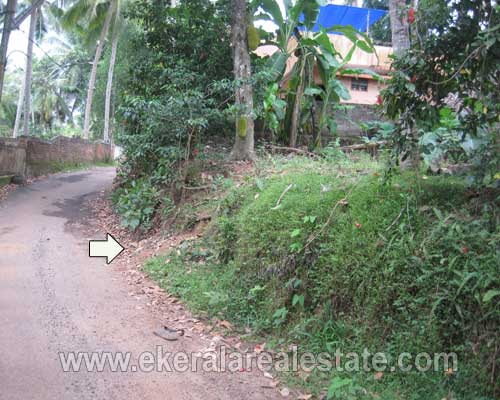 land plots sale in Vazhayila trivandrum Vazhayila real estate kerala