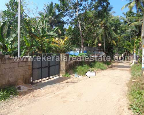 Pallichal real estate trivandrum Pallichal land plots for sale kerala