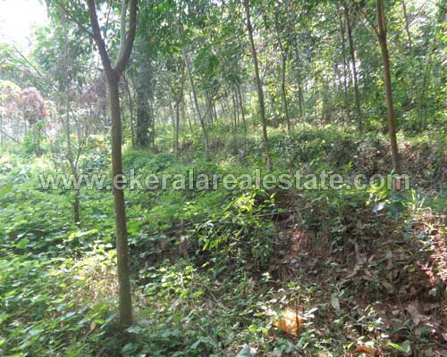 vembayam real estate thiruvananthapuram Manjadimoodu vembayam land plots sale