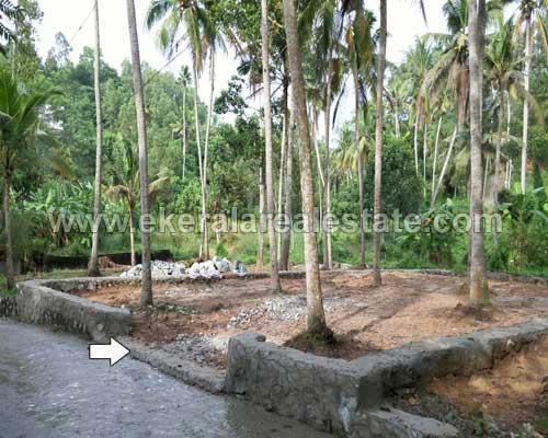 kariavattom properties trivandrum kariavattom 7 cent land plots sale kerala properties
