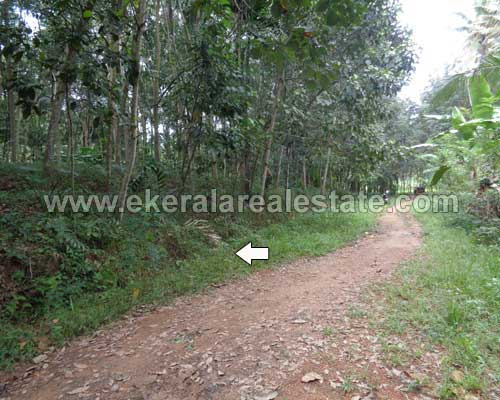 residential land sale in Thonnakkal trivandrum kerala real estate