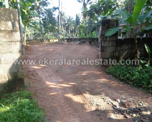 11 cent land for sale in neyyattinkara property neyyattinkara land