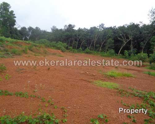 residential land plots for sale in peyad property peyad land