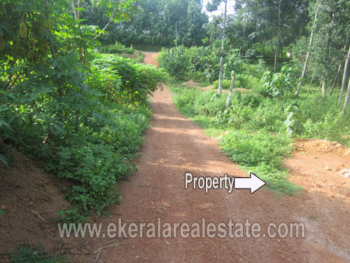 kanyakulangara real estate thiruvananthapuram kanyakulangara residential plots 8 cent for sale