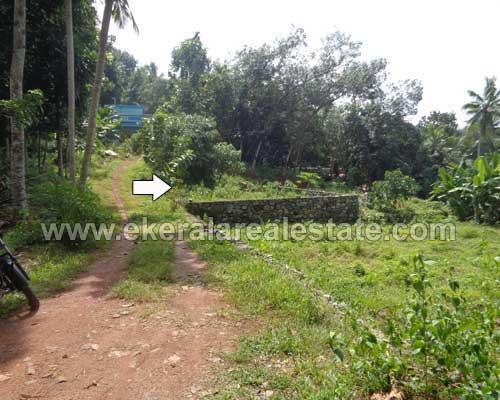 residential land plots sale in Powdikonam trivandrum kerala real estate
