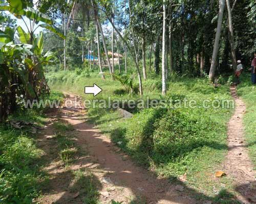 vembayam Koppam house plot for sale vembayam properties sale