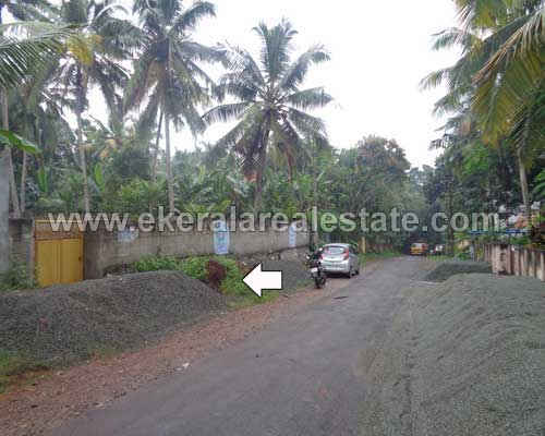 20 cent residential land plot sale in Balaramapuram trivandrum kerala real estate