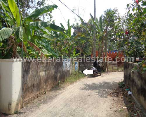 peyad properties trivandrum kundamankadavu peyad land plots for Sale kerala