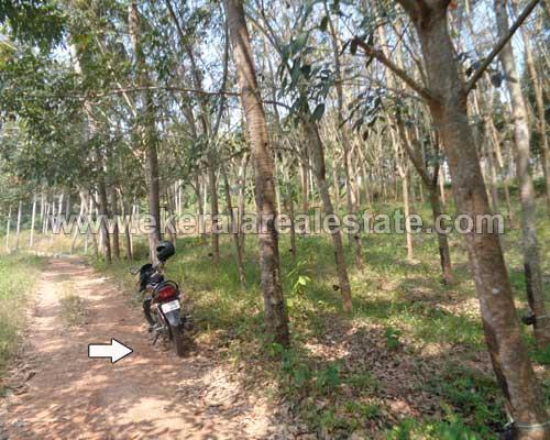 house plots sale in Chenkottukonam trivandrum kerala