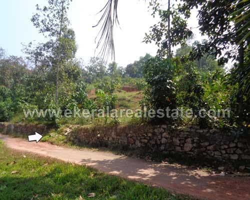 Mangalapuram trivandrum 60 Cent Plots in Mangalapuram real estate properties sale