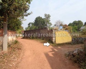 trivandrum real estate kachani residential land plots 8 cent for sale in kachani trivandrum