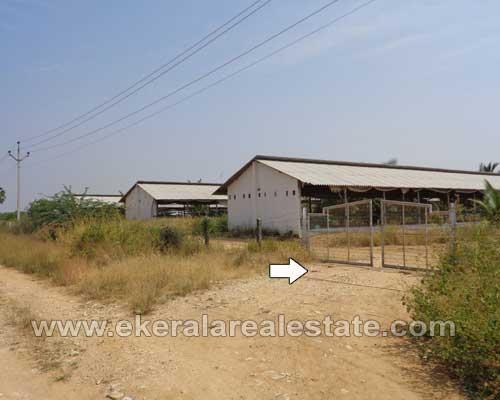 tirunelveli real estate Tamil Nadu 10 Acres Land for sale