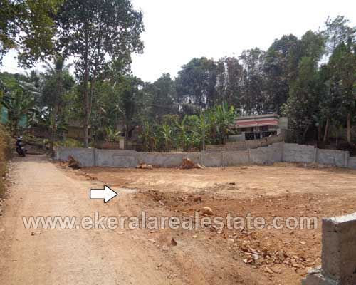 mangattukadavu residential land plots 20 cents for sale mangattukadavu properties sale