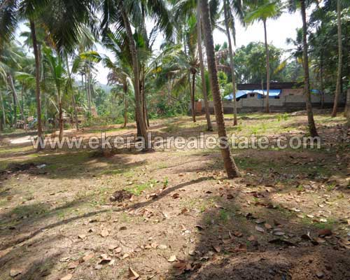 Residential land plots sale in balaramapuram Property balaramapuram land