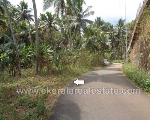 karakulam thiruvananthapuram house plots sale kerala real estate