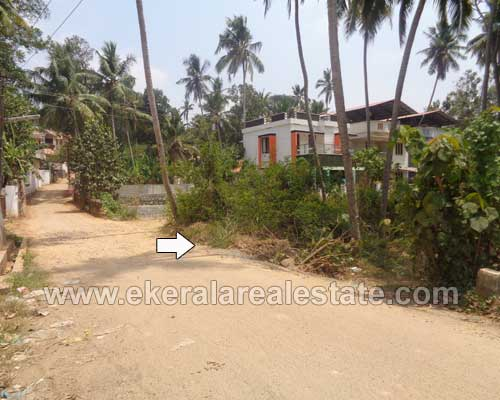 residential lorry plots 18 cents for sale kanjirampara trivandrum real estate