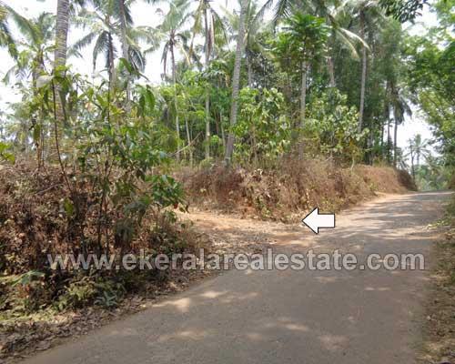 residential land plots sale Kattakada trivandrum real estate