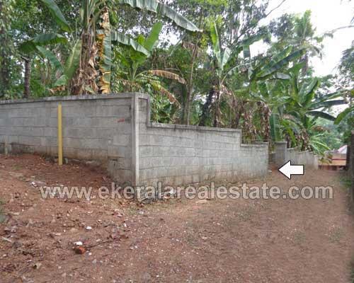 Pathamkallu real estate Residential land for sale Pathamkallu Nedumangad properties