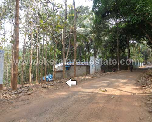 residential lorry plots 95 cents for sale at malayinkeezhu trivandrum kerala real estate