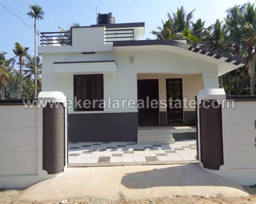 kerala real estate Pappanamcode 917 sq.ft. new house villas for sale Pappanamcode