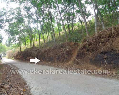 residential lorry plots 50 cents for sale at pothencode trivandrum kerala real estate