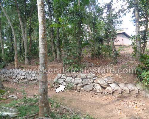 Residential-Plot-for-Sale-at-Karakulam-Trivandrum-Kerala11
