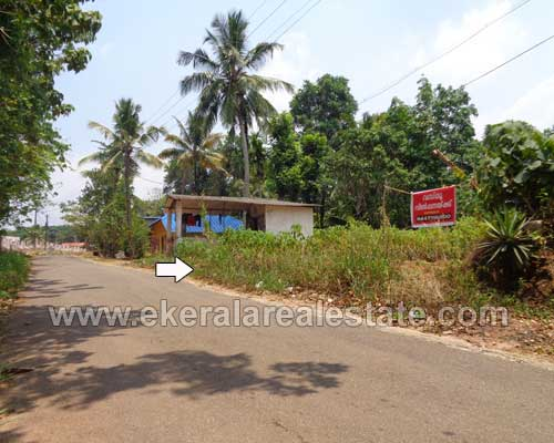 residential land plots sale at Thattathumala Kilimanoor trivandrum Kilimanoor real estate