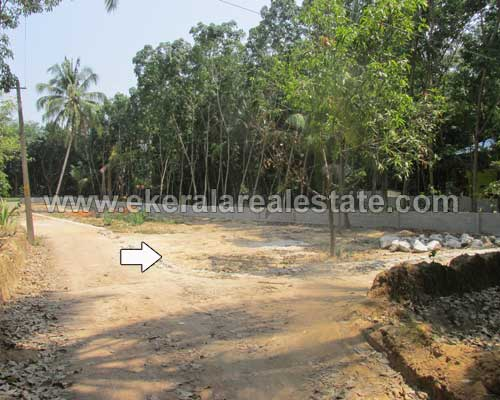 Mangalapuram real estate trivandrum Karamoodu Land Plot for sale