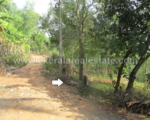 Balaramapuram real estate Trivandrum Mukkampalamoodu Land for sale