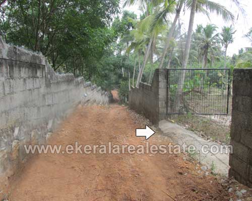 Kerala Real estate Trivandrum Ooruttambalam Land plot for sale