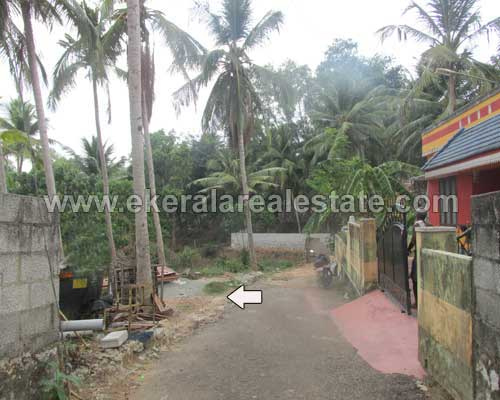 Peyad Properties Thiruvananthapuram Puliyarakonam  Land Plot for sale