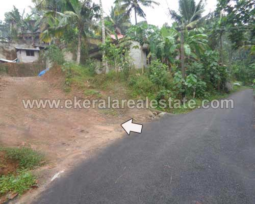 Vattiyoorkavu real estate Thiruvananthapuram Manikanteswaram Land plot for sale