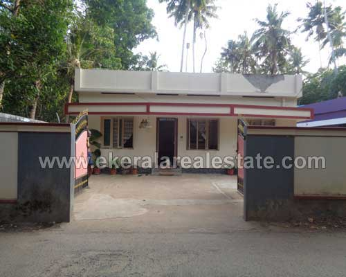 Kerala real estate Thiruvananthapuram Poovar House Villas for sale
