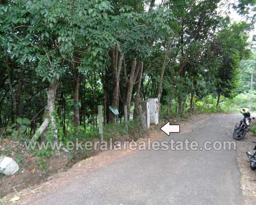 Rubber estate for sale at Vilappilsala Peyad Trivandrum Kerala