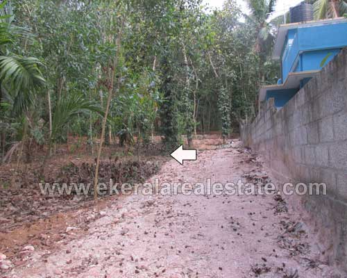 Thiruvananthapuram Real estate Balaramapuram Properties land at Balaramapuram