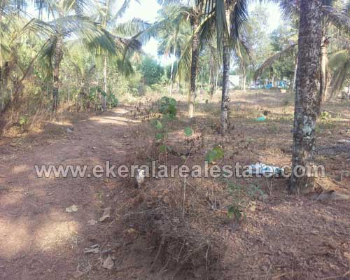 Thiruvananthapuram Properties house plot for sale at Kavalayoor Varkala Trivandrum