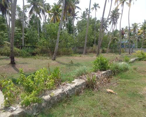 20 cents plot in Kudappanakunnu Kaniyapuram trivandrum Kaniyapuram real estate