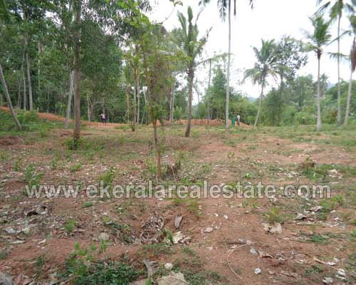 Trivandrum real estate properties Thirumala land for sale at Thrikkannapuram Thirumala