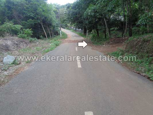 Kerala real estate Properties Trivandrum Kallambalam Land for sale