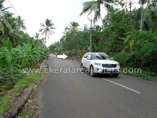 Residential land in Pravachambalam Mottamoodu Trivandrum Kerala real estate Properties