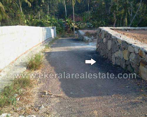 Trivandrum real estate Properties Residential Land at Manvila Sreekaryam Kerala