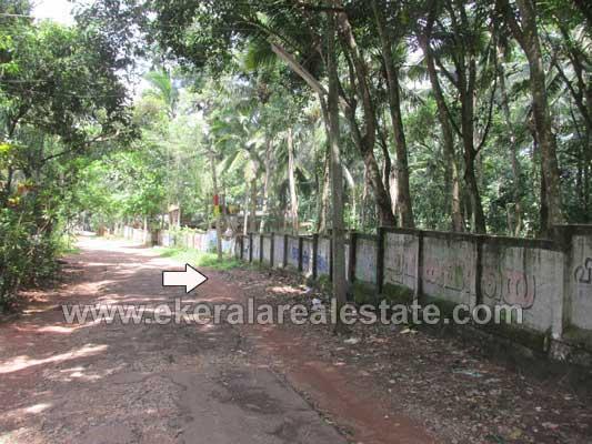 Land for Sale at Anthiyoorkonam Malayinkeezhu Trivandrum Kerala Real estate