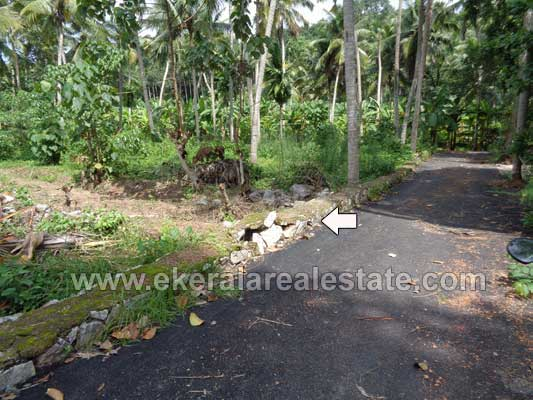 Trivandrum Real estate Kerala 10 cents Land Plot at Kariavattom near Kazhakuttom Trivandrum