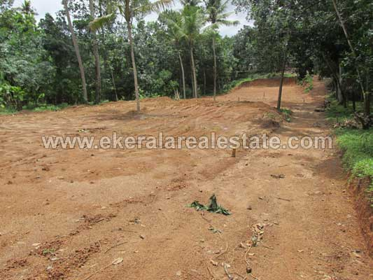 Tar road frontage land for Sale near Venjaramoodu Trivandrum Kerala