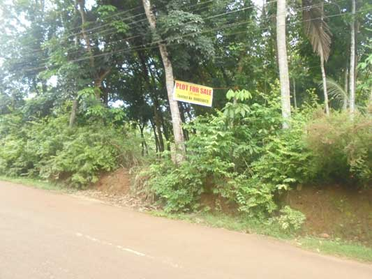Residential 35 cents House plot for Sale at Vellarada Trivandrum Kerala