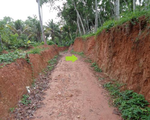 Land at Chavadinada near Balaramapuram Trivandrum Kerala Properties