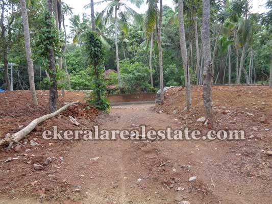 Land Sale in Balaramapuram Residential Land Sale at Avanakuzhi near Balaramapuram Trivandrum real estate