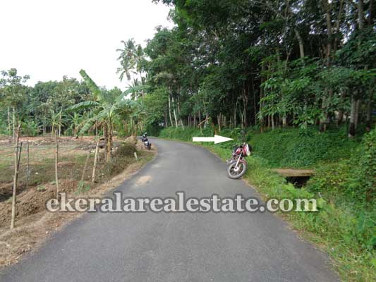 Trivandrum real estate Properties Land Property in Koppam Vembayam Trivandrum